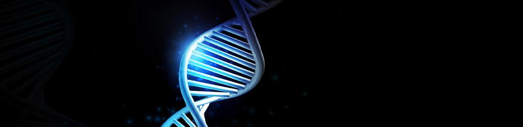 MemVerge at Bio-IT World 2021